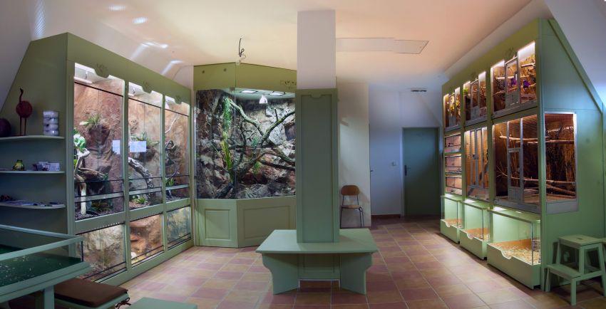 praktická část ekocentra (terária, insektária, vitríny, klece...)