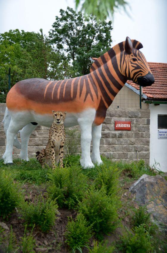 Mzuri u sochy hřebce zebry kvaga
